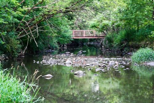Taylor-Creek-Park.jpg
