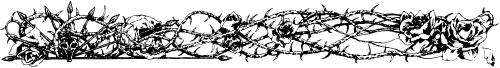 Thomas-Roses--Thorns.png